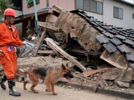 TETRA z brytyjskimi ratownikami w Japonii