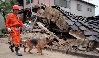Japonia-trzesienie-ziemi-tsunami-2011