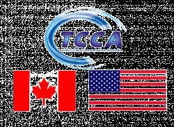 Tetra-Forum-w-Ameryce-Polnocnej.png