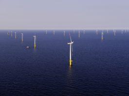 DAMM i Motorola wyposażą w łączność TETRA elektrownię wiatrową na Bałtyku