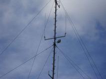 10 nowych anten TETRA/EDACS dla stołecznej policji